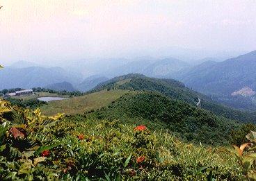 吾妻山 池の原.jpg (31069 バイト)